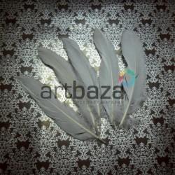 Набор натуральных декоративных перьев, белых, 20 - 23 см., 5 штук, REGINA