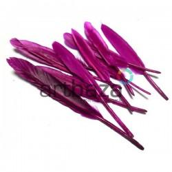 Набор натуральных декоративных перьев, сливовых, 12 - 15 см., 10 штук, REGINA