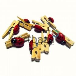 Набор неокрашенных деревянных декоративных прищепок с божьей коровкой, 0.3 x 2.5 см., 8 штук, REGINA
