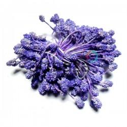 Тычинки для цветов (гроздь), двусторонние, фиолетовые, размер 6 мм., длина 6 см., REGINA