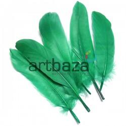Набор натуральных декоративных перьев, салатовых, 20 - 23 см., 5 штук, REGINA