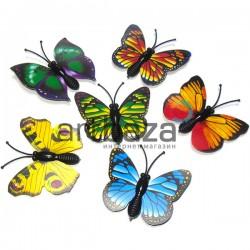 Набор декоративных бабочек для декора, 4 x 3.8 см., 6 штук, REGINA